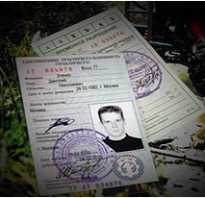Водительское удостоверение на квадроцикл: нужно ли и какая категория